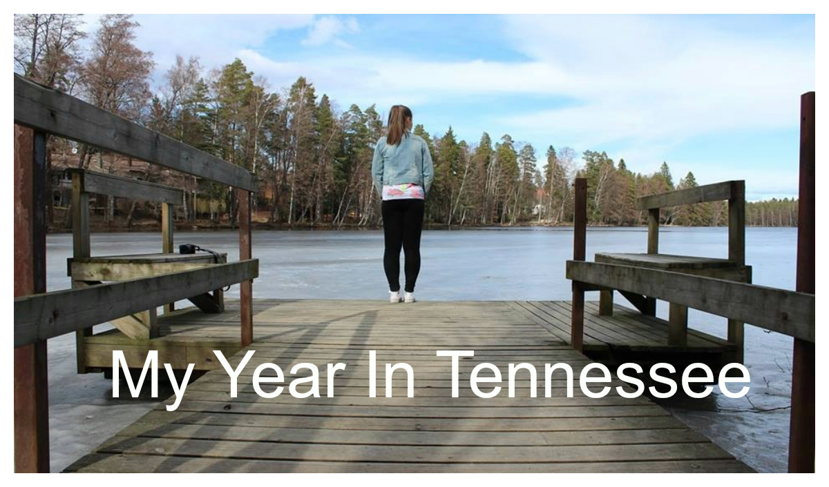 My Year In Tennessee